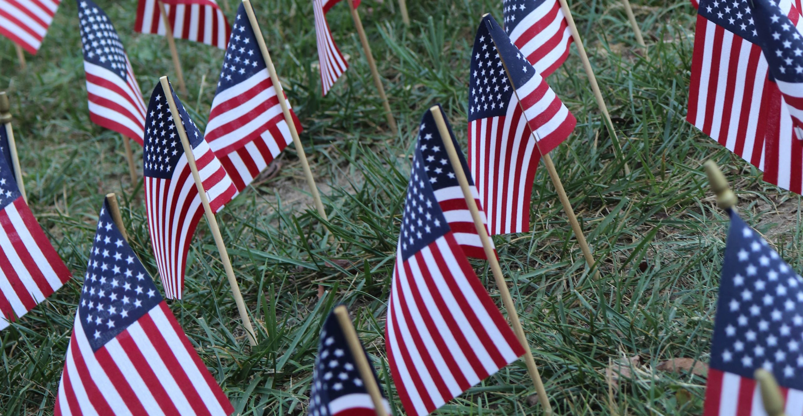 American flags on campus